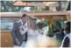 photographe+photo+mariage+sur+le+vif+naturel+aix+en+provence+cannes+toulon+var+bouche+du+rhone+thomas+fun+décalé+enfant+costume+balancoire